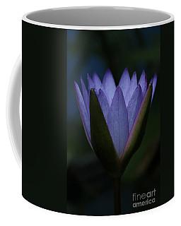 Midnight Water Lily Coffee Mug