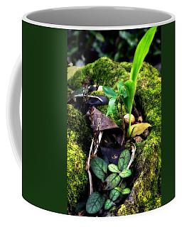 Coffee Mug featuring the photograph Miniature Garden by Jim Thompson