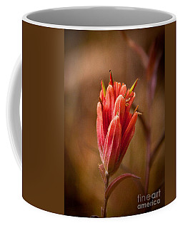 Miniature Indian Paintbrush Coffee Mug by Steven Reed