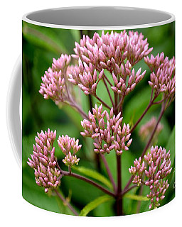 Miniature Purple Cones Coffee Mug