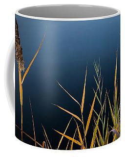 Coffee Mug featuring the photograph Minimalist Me by Glenn DiPaola