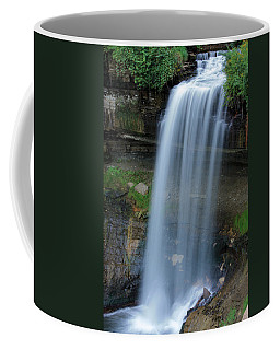 Minnehaha Falls Coffee Mug