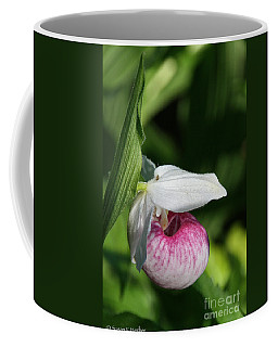 Minnesota's Wild Flower Coffee Mug