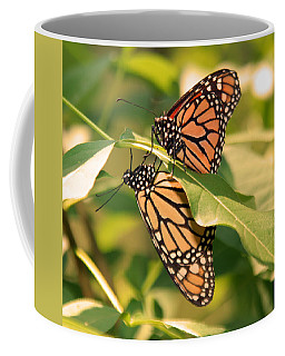 Coffee Mug featuring the photograph Mirror Image by Karen Silvestri