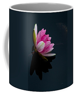Mirror... Mirror On The Water Coffee Mug by Eti Reid