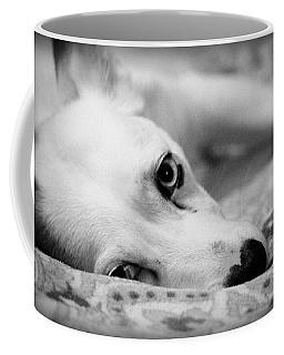 Coffee Mug featuring the photograph Miss Donut  by Faith Williams