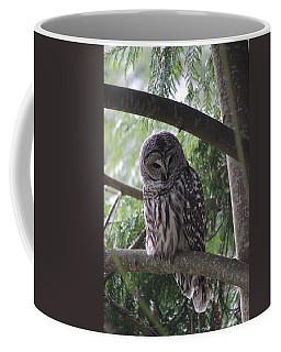 Missing His Friend Coffee Mug