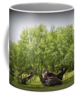 Mission Espada - Tree Coffee Mug