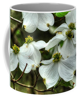 Coffee Mug featuring the photograph Mississippi Dogwood II by Lanita Williams