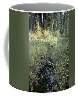 Mississippi River Headwaters Coffee Mug by Garry McMichael