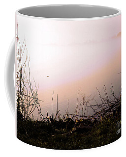 Coffee Mug featuring the photograph Misty Morning by Robyn King