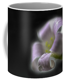 Misty Shamrock 3 Coffee Mug by Susan Capuano