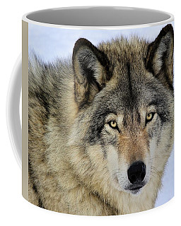 Misunderstood Coffee Mug