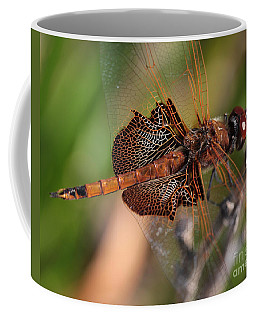 Mocha And Cream Dragonfly Profile Coffee Mug by Kenny Glotfelty