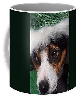 Mojo's New Holiday Coat Coffee Mug by Claudia Goodell