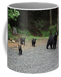 Coffee Mug featuring the photograph Momma And Three Bears by Jan Dappen