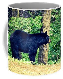 Momma Bear Coffee Mug by Jan Dappen