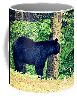 Coffee Mug featuring the photograph Momma Bear by Jan Dappen
