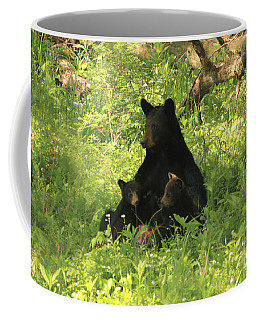 Coffee Mug featuring the photograph Mommy And Babies by Geraldine DeBoer