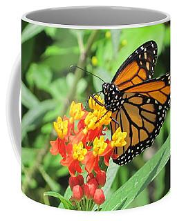 Monarch At Rest Coffee Mug