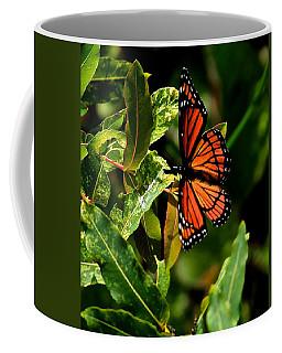 Viceroy Butterfly II Coffee Mug