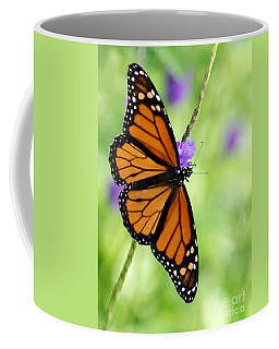 Monarch Butterfly In Spring Coffee Mug