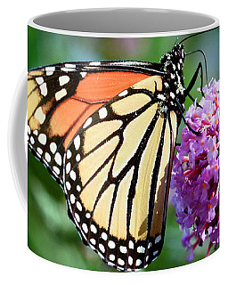 Monarch Butterfly Soaking Up The Sun Coffee Mug