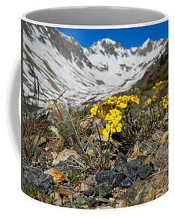 Blue Lakes Colorado Wildflowers Coffee Mug