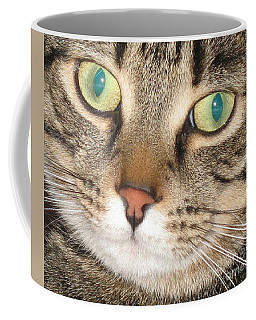 Coffee Mug featuring the photograph Monty The Cat by Jolanta Anna Karolska
