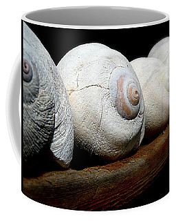 Moon Shells Coffee Mug by Micki Findlay