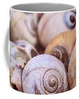 Coffee Mug featuring the photograph Moon Snail Shells by Peggy Collins