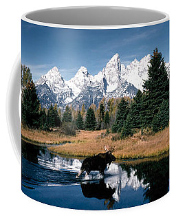 Moose & Beaver Pond Grand Teton Coffee Mug