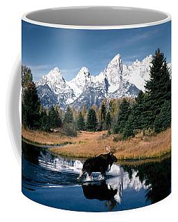 Moose & Beaver Pond Grand Teton Coffee Mug
