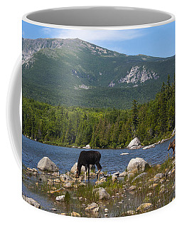 Moose Baxter State Park Maine Coffee Mug