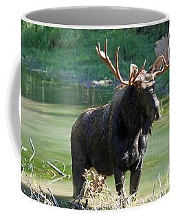 Moose Country Coffee Mug