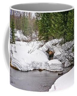 Moose In Alaska Coffee Mug