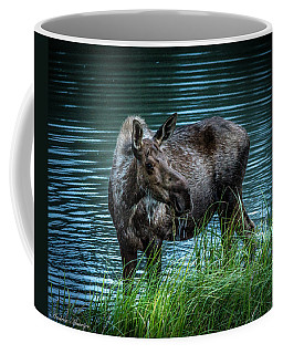 Moose In The Water Coffee Mug by Andrew Matwijec