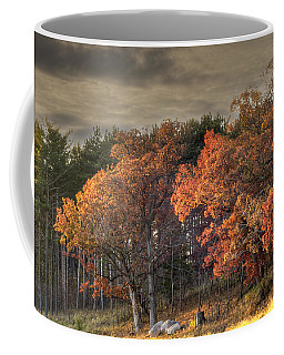 Morning Beauty Coffee Mug