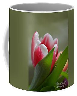Morning Brilliance Coffee Mug