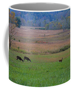 Morning Deer In Cades Cove Coffee Mug