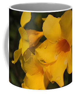 Coffee Mug featuring the photograph Morning  Delight by Miguel Winterpacht