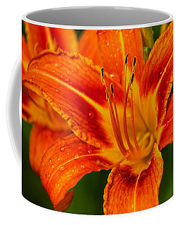 Coffee Mug featuring the photograph Morning Dew by Dave Files