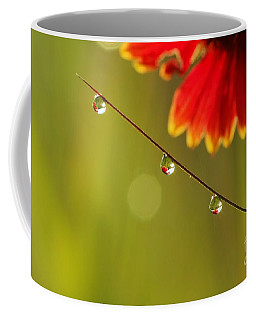 Morning Dew Coffee Mug by Patrick Shupert