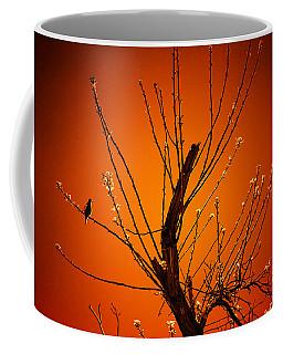 Morning Dove Sunrise Coffee Mug