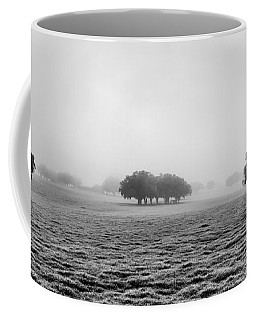 Coffee Mug featuring the photograph Morning Fog by Howard Salmon