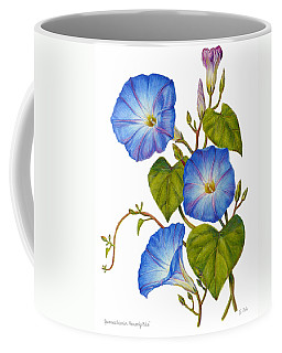 Morning Glories - Ipomoea Tricolor Heavenly Blue Coffee Mug