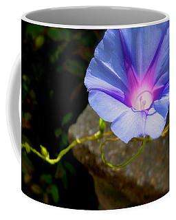Morning Glow Coffee Mug by Tracy Male
