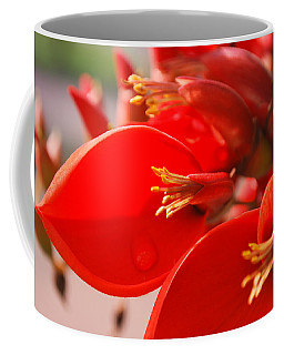 Coffee Mug featuring the photograph Morning Jog by Miguel Winterpacht
