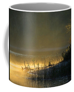 Coffee Mug featuring the photograph Morning Mist by Dianne Cowen