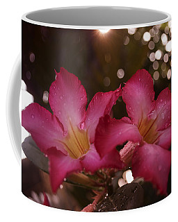 Coffee Mug featuring the photograph Morning Sunshine And Rain by Miguel Winterpacht